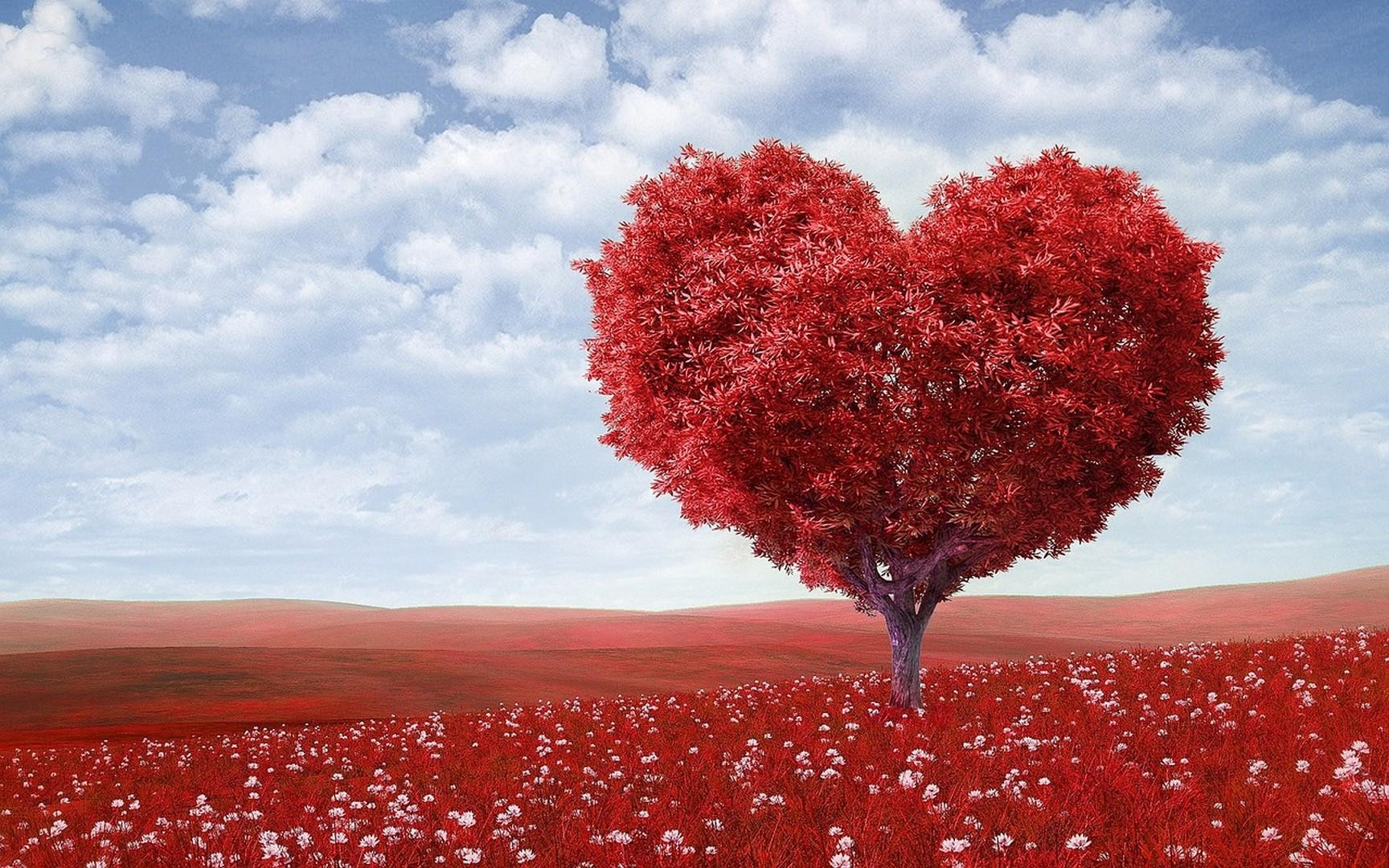 Как понять, что парень влюблен: 10 признаков, мнение психологов и невербалика