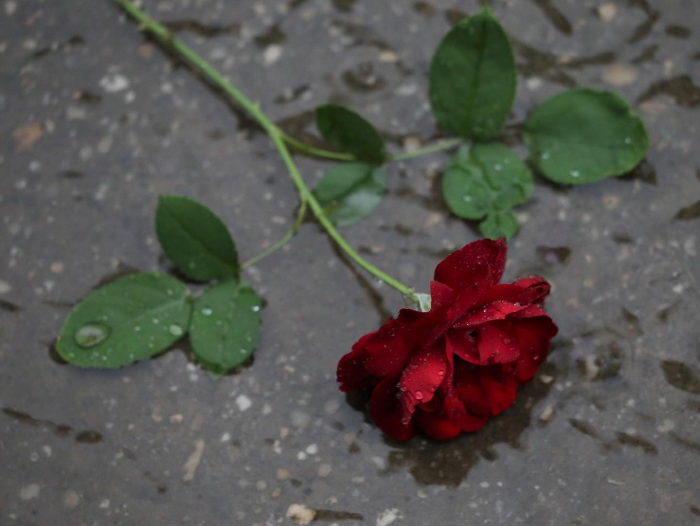 Муж ушел из семьи: советы по возврату к прежней жизни