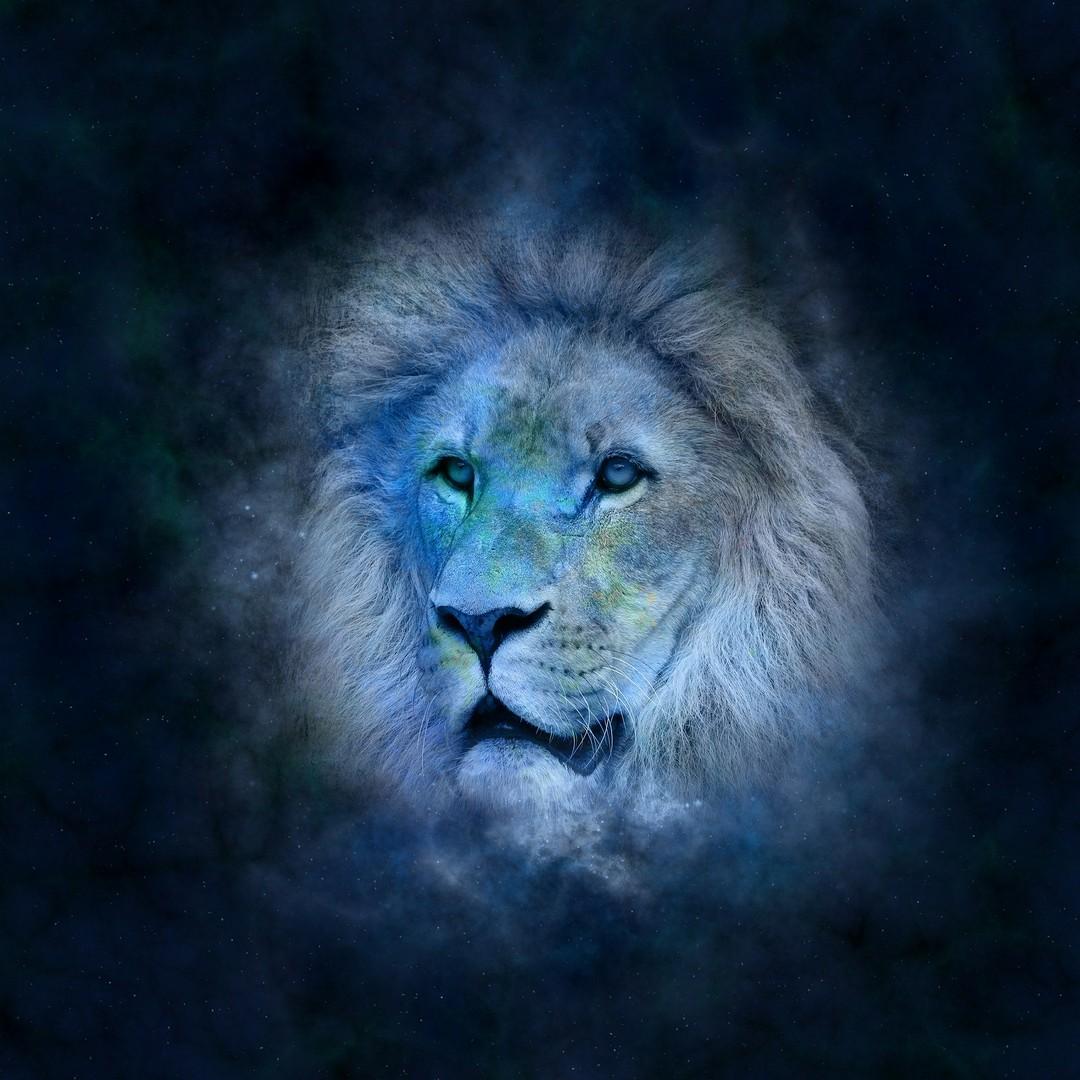 Мужчина-Лев: какой он в любви, сильные и слабые стороны