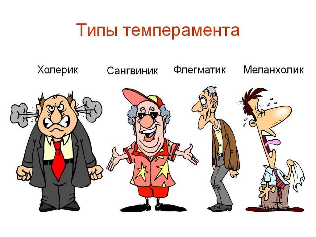 4 типа темперамента: подробное описание с воздействием на жизнь
