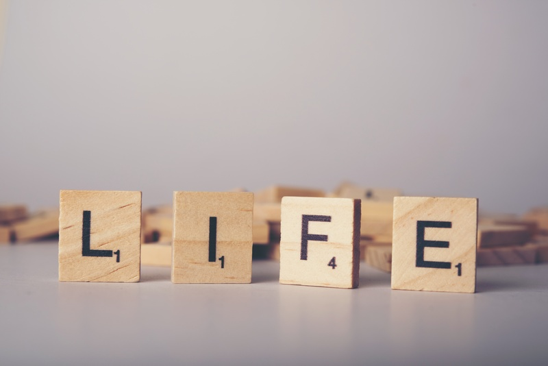 Что такое жизненные ценности: виды, и примеры из жизни
